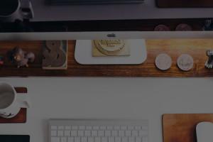 Web Development as an Industry