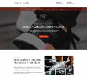 Free Sport Shop Website Template