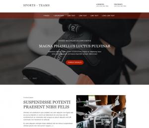 Free Sport Shop Website Template