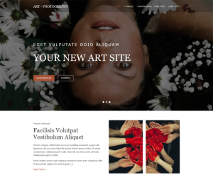 Free Artist Website Template